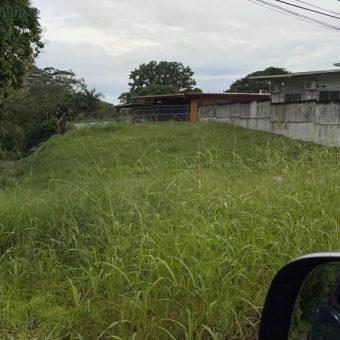 Terreno en Venta – Urbanizacion Las Acasias David – Chiriqui